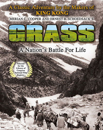Grass a documentary about iranian nomads migration