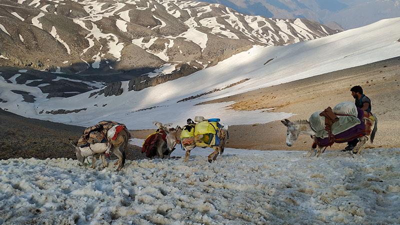 Iran nomad tour