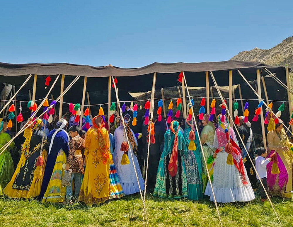 The wedding of Qashqai nomads full of colors and songs