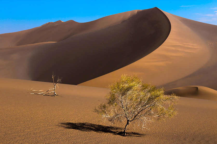 One of the hottest spots of the earth at Lut desert in Iran